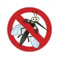 Εξολόθρευση Εντόμων